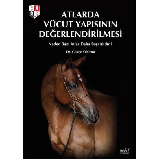 Atlarda Vücut Yapısının Değerlendirilmesi: Neden Bazı Atlar Daha Başarılıdır?