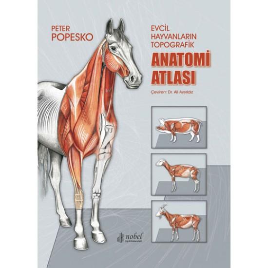 Evcil Hayvanların Topografik Anatomi Atlası Popesko
